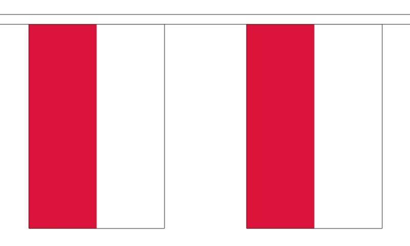 POLAND FLAG BUNTING 9 metres 30 flags POLISH WARSAW