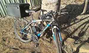 "Mountain bike 29"" 80 cc motor with extras Kununurra East Kimberley Area Preview"