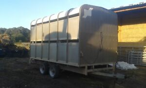 Ifor Williams DP120 livestock (sheep/cattle trailer)