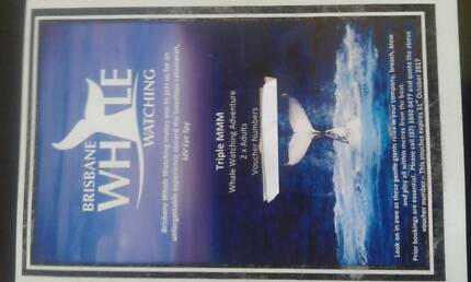 2x Adult Whale Watching tickets