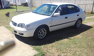 Corolla seca  $1400 negotiable Kurri Kurri Cessnock Area Preview