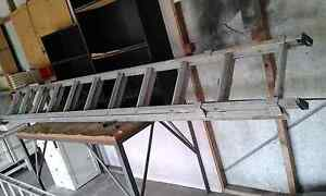Extension  ladder Barrack Heights Shellharbour Area Preview