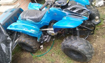 Quads/ride on swaps or make a offer  Cessnock Cessnock Area Preview