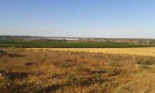 ELEVATED RURAL LAND FOR SALE Moorook Loxton Waikerie Preview