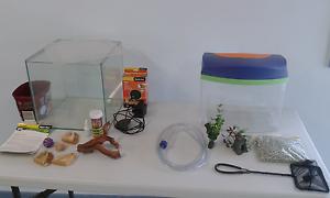 Hermit crab habitat and basic fish tank Kallangur Pine Rivers Area Preview