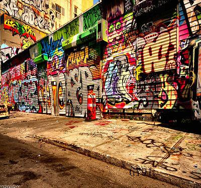 Graffiti Vinyl Für Fotostudio Hintergrund Photo Stoff Screen 1.5X2.1M GY91