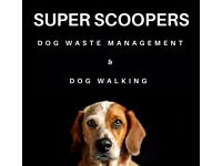Super Scoopers dog walking / dog walker service