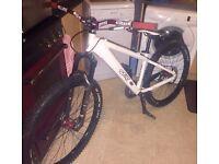 Dirt jumper, jump bike great condition ( mountain bike )