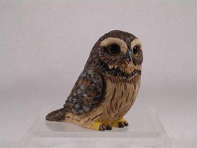 Harmony Kingdom Ball Pot Bellys Belly Pygmy  Owl   New  Pbzow6  Nib