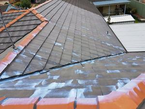 Roof painting services Killara Ku-ring-gai Area Preview