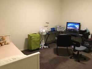 Split level 1 bedroom 1 car space apartment for lease Homebush Strathfield Area Preview