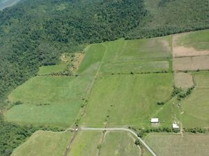 78 acres of Land and cattle near Babinda East Russell Cairns Surrounds Preview