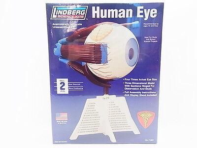"LOT 12789 | Lindberg Science Kits 71307 ""Human Eye"" Auge 4:1 Bausatz NEU OVP"