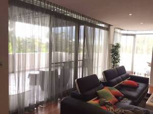 4 SHEER  PINCH PLEAT OLIVE CURTAINS Chatswood Willoughby Area Preview