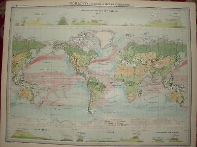 1920 LARGE MAP ~ WORLD VEGETATION ETC ~ 23 INCHES x 18