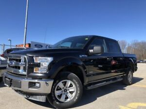 2017 Ford F-150 XLT 4X4|PRO TRAILER BACKUP ASSIST|TARILER TOW...