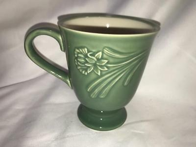 Lenox Poppies Rainbow Green  Accent Mug New First Quality