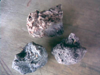 Lava, dekorative, strukturierte Lavasteine 10 kg (1/2)