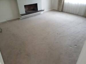 buy popular c6a61 bf27d HOUSE FULL OF THICK BEIGE CARPET & GOLD AIRSTEP UNDERLAY ...