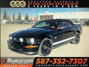 2009 Ford Mustang V6 / Convertible / Leather