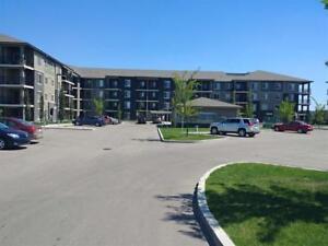 411 270 McConachie Dr DR NW NW Edmonton, Alberta