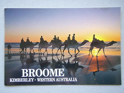 Broome Kimberley Western Australia Camel Safari On Cable Beach Postcard
