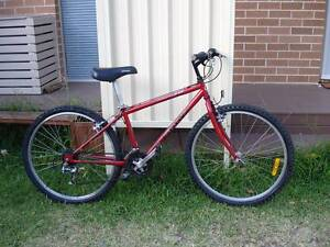 Red Mountain Bike Kingsford Eastern Suburbs Preview