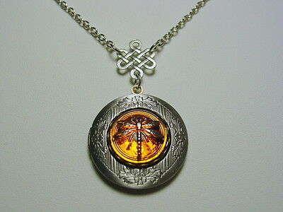 Scottish Heritage Outlander Dragonfly In Amber Locket With Celtic Knot Drop