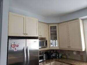 Kitchen Cabinets and Granite