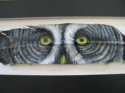 Great Grey Owl Eyes   Russ Abbott Hand Painted Feather   Commissioned