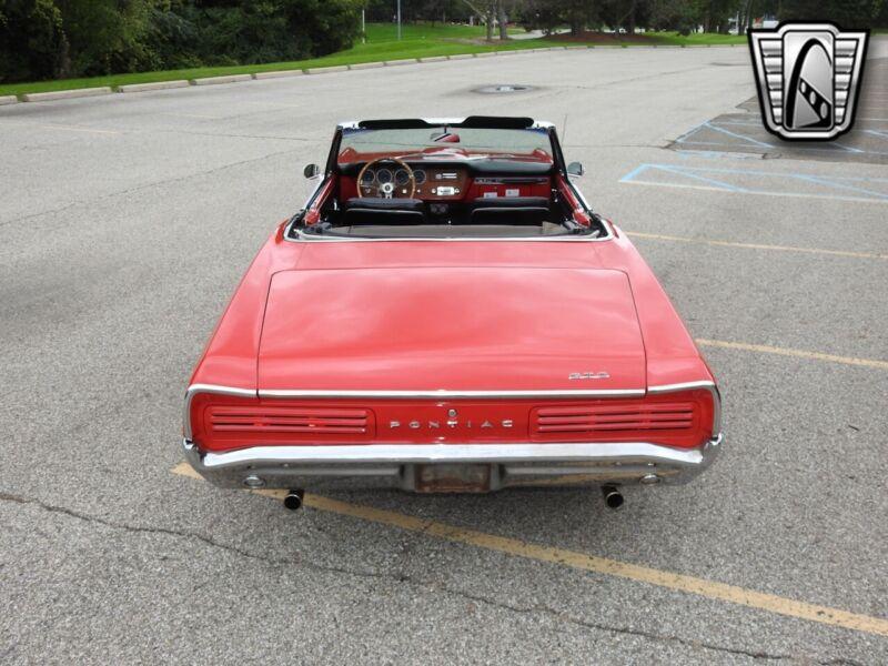 Image 5 Voiture Américaine de collection Pontiac GTO 1966