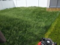 Lawn mowing and maintenance at affordable prices