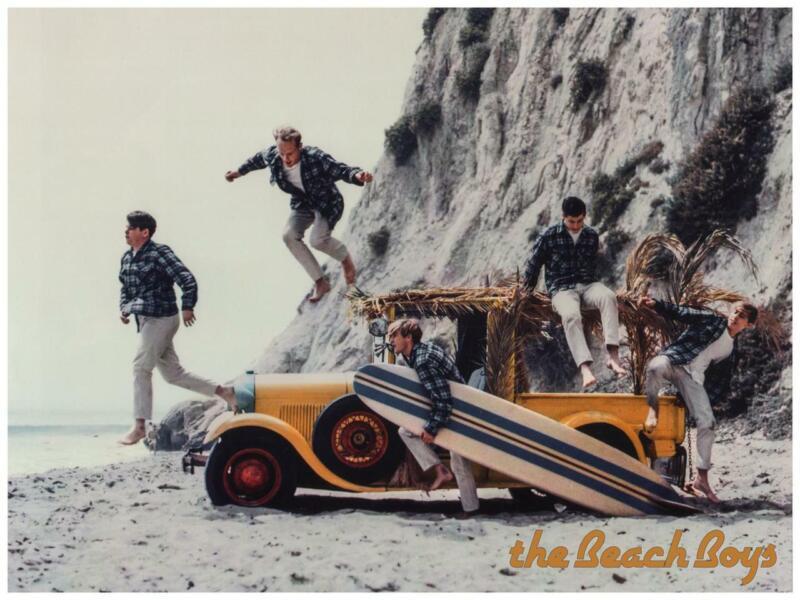 the Beach Boys - POSTER - Brian & Dennis Wilson - EARLY Pic Wall Art