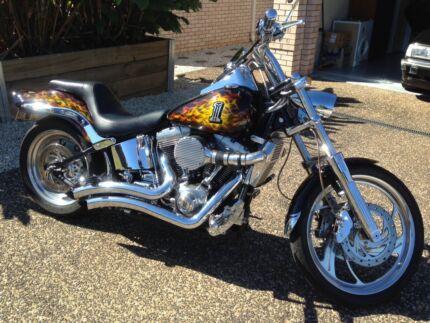 Custom Harley Davidson Softail Show Bike Brisbane City Brisbane North West Preview