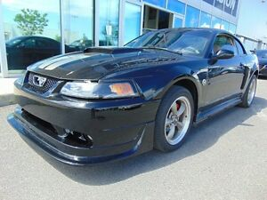 2004 Ford Mustang GT MANUAL