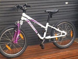 Specialized 6 speed Hotrock Bike Dulwich Hill Marrickville Area Preview