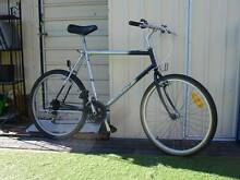 Height Frame 23 inh  Mountain Bike Kingsford Eastern Suburbs Preview