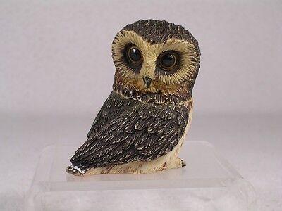 Owl Pot Belly - Harmony Kingdom Ball Pot Bellys / Belly 'Saw-Whet'  Owl  #PBZOW  New In Box