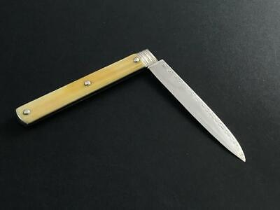 1784 London assayed silver folding fruit knife with great scales — MINT