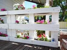 FUNKY, STYLISH UPCYCLED PALLET PLANTER BOX, VARIOUS COLOURS Bayswater Bayswater Area Preview