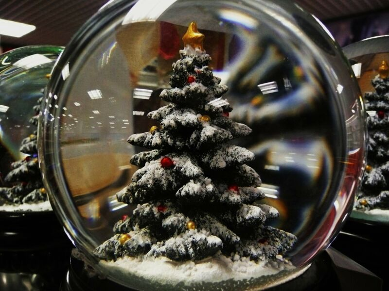 Weigh up the pros and cons of real vs fake trees