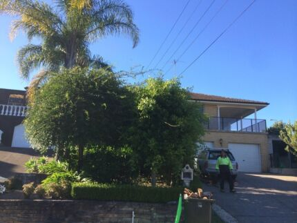 Garden Maintenance&Lawn Mowing  Campsie Canterbury Area Preview