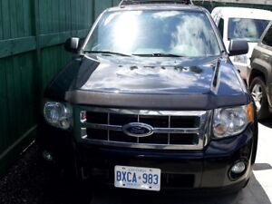2010 Ford Escape 4WD 4dr V6 Auto XLT