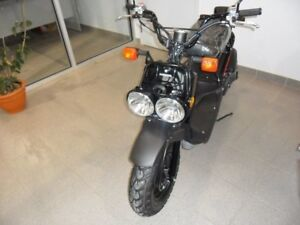 2018 Honda NPS50J RUCKUS! ONLY $18.62 WEEKLY!!!