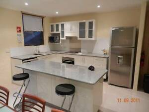 Executive Home on 4 split levels in Adelaide CBD Adelaide CBD Adelaide City Preview