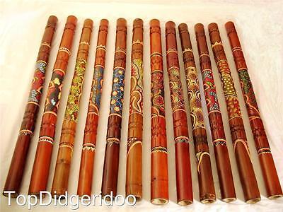 Dot Pintado & Tallado Aborigen Didgeridoo Gran Sonido