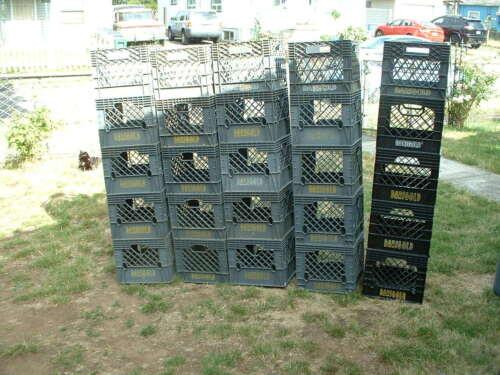 Darigold Farm Gray Milk Crate