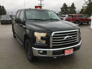 2016 Ford F-150 XTR | 4X4 | One Owner | Navigation