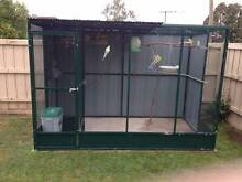 ***** NOW IS THE TIME TO BUILD THAT  AVIARY FREE P/C JULY ***** Preston Darebin Area Preview