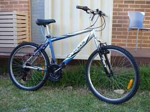 Aluminium Blue Silver Mountain Bike Kingsford Eastern Suburbs Preview
